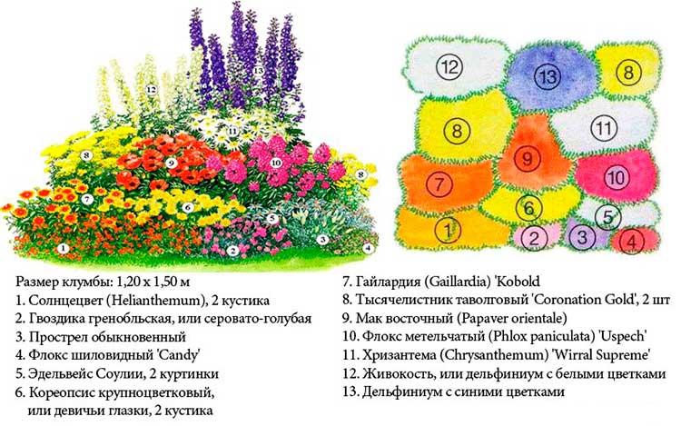 Схемы клумб для цветов своими руками фото